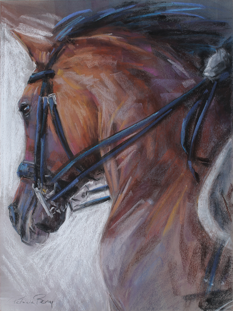 """The Lusitano's Power"" by Patricia Bevan"