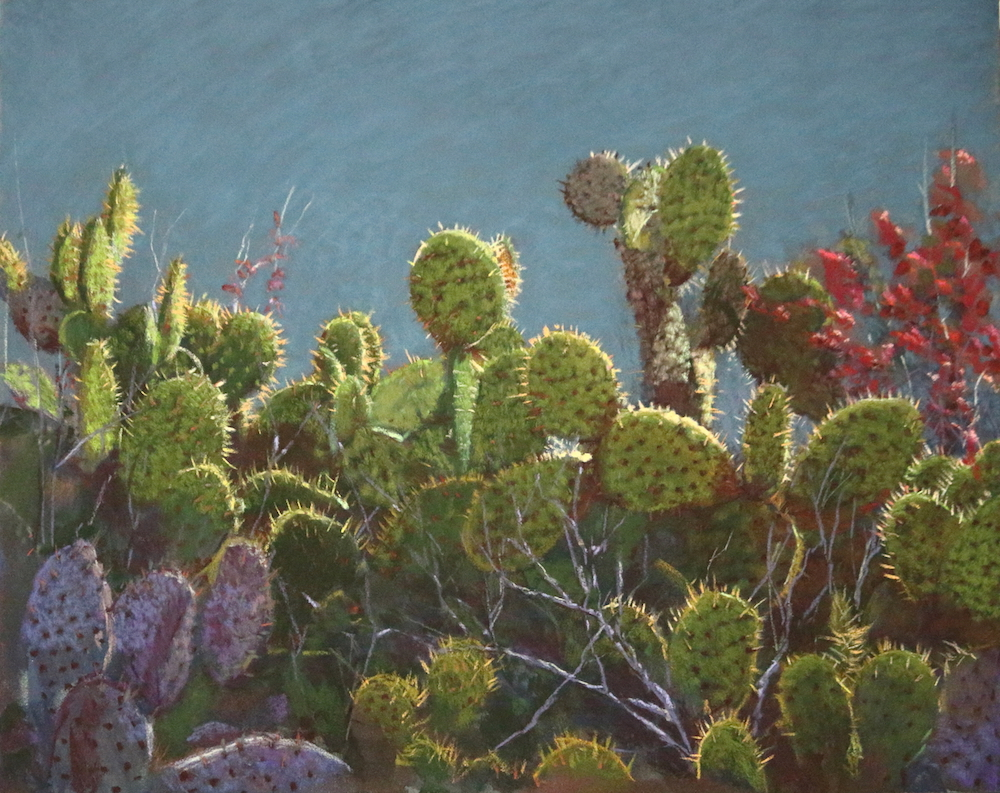 """Newport Bay Cacti"" by Lori White"
