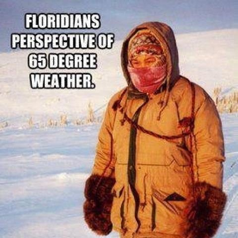 An accurate description of how we felt this morning! Bring out the parkas! #brr #floridanative #70iscold