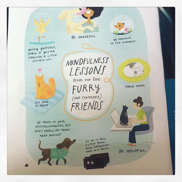 Found in the June issue of Mindful, great reminders to stay present from some lovable pets  #mindful #meditation #tgif #justbreathe