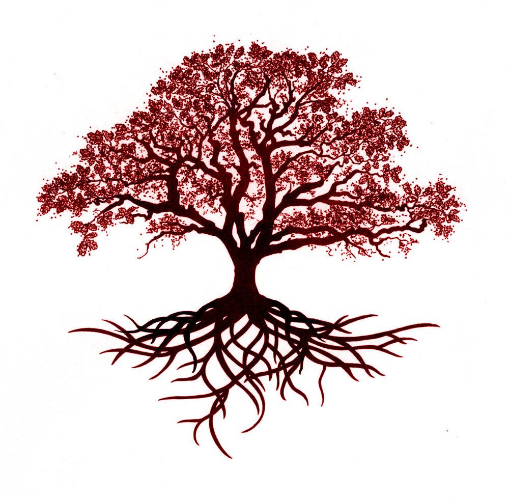 Narra Tree Drawing Red Tint.jpg