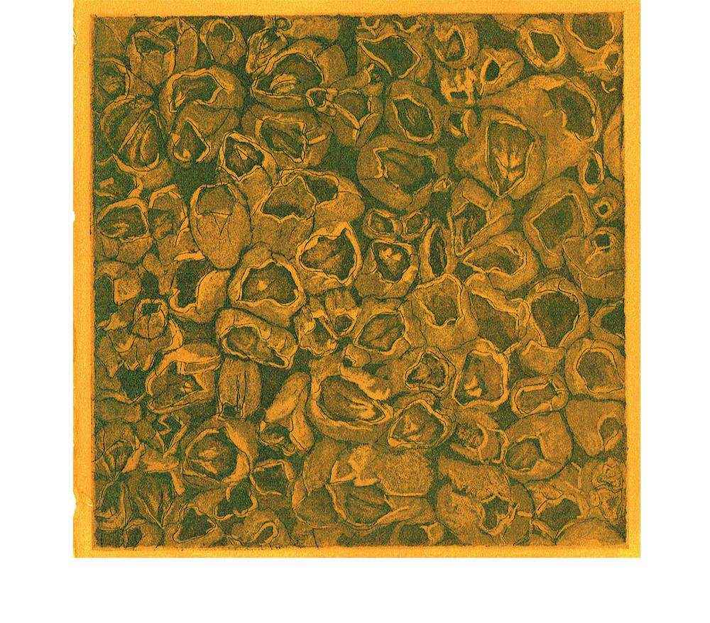 "Barnacle Box, 2014 (Aquatint on copper 5""x5"")"