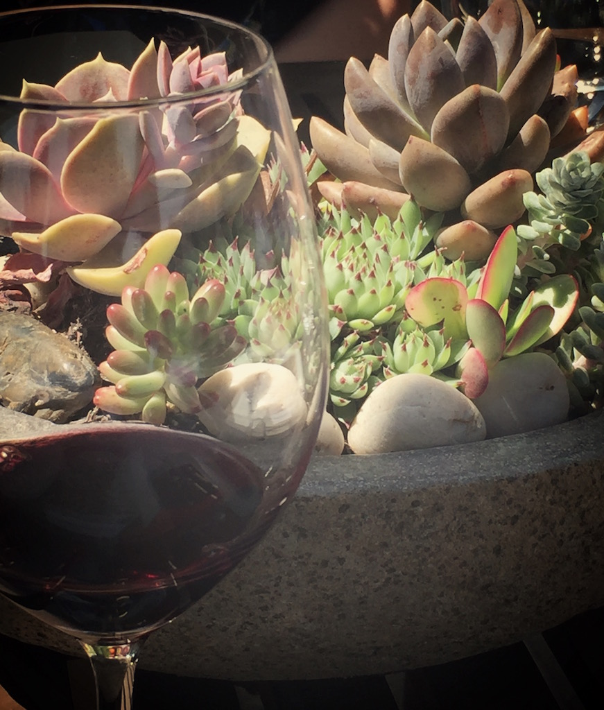 succulents wine napa.jpg