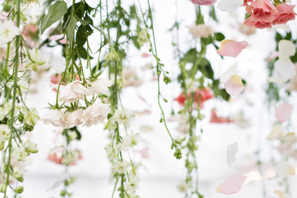 flowersintent.jpg