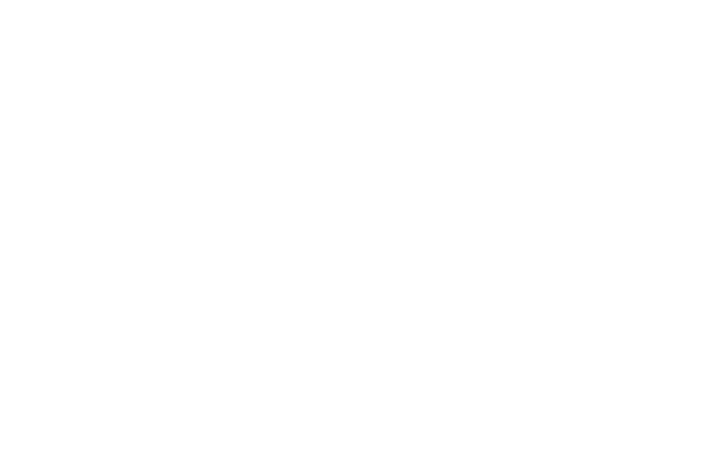 institches logo.png
