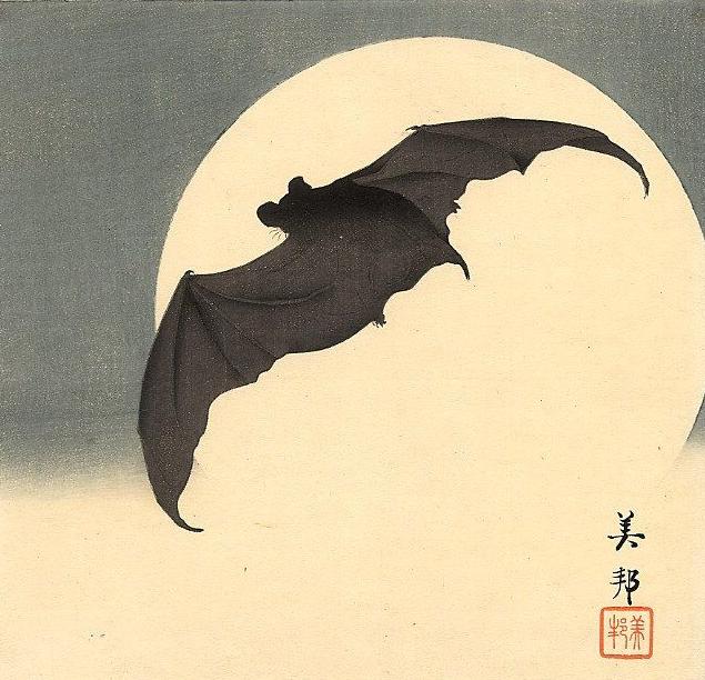 Morcego 2