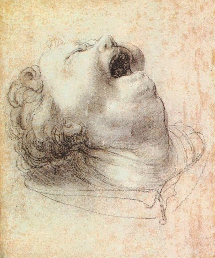 Matthias Grünewald, Head of a Shouting Man, 1520   Placements:  MÃO | PEITO |