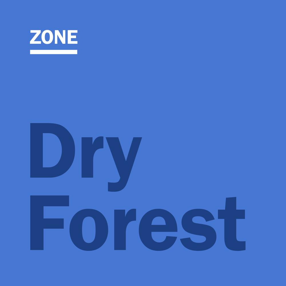 dryforest2.jpg
