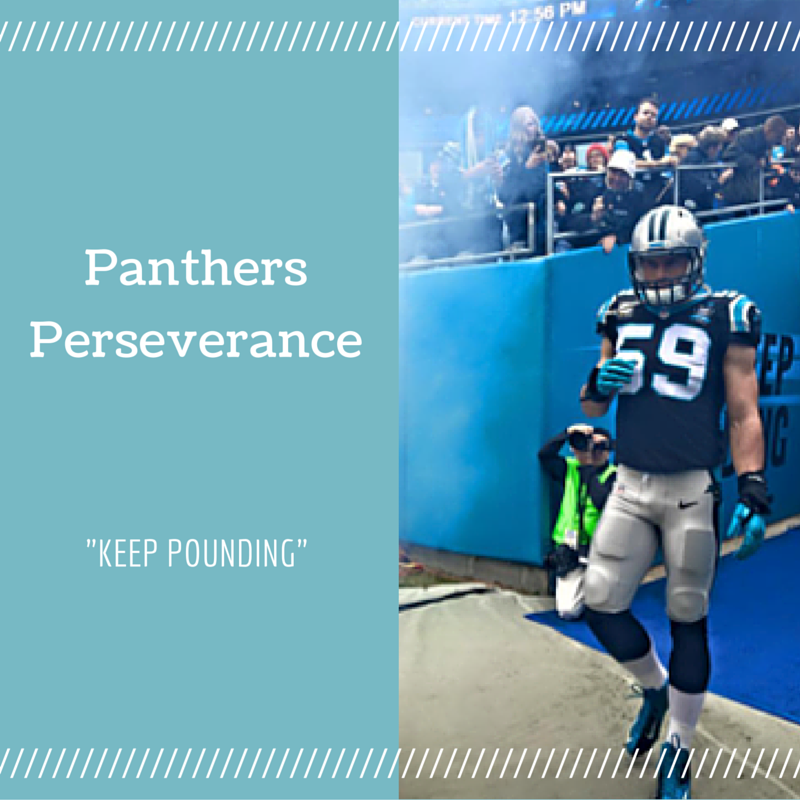 Panthers Perseverance