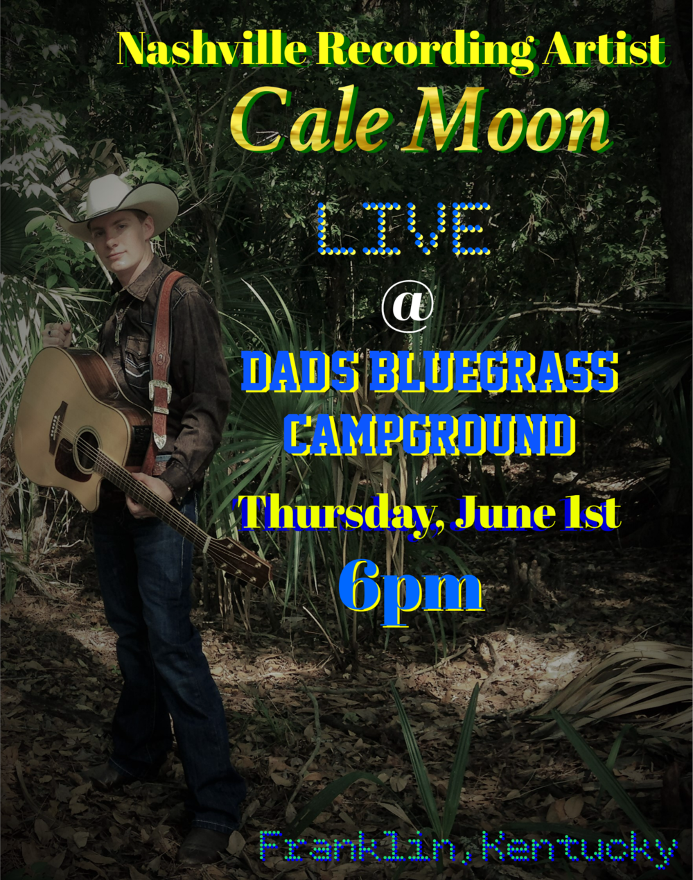 Dad's Bluegrass June 1st 2017 poster.png