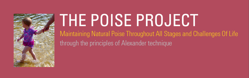 Poise Project Table Cloth banner.png