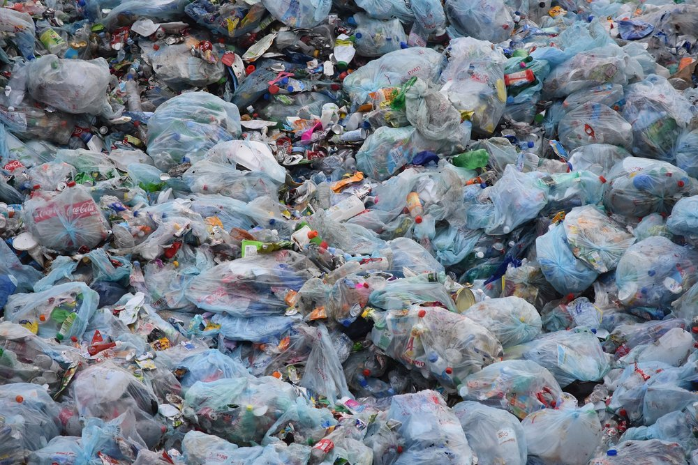 Piles and piles of plastic. It's an all too familiar image, but one that we can take small steps every day to change.