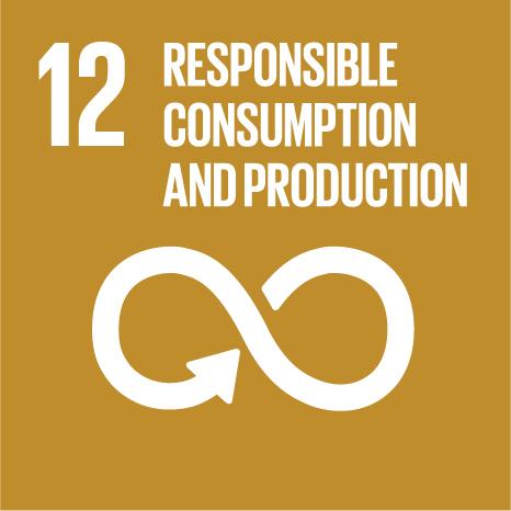 12 responsible consumption and productin.jpg