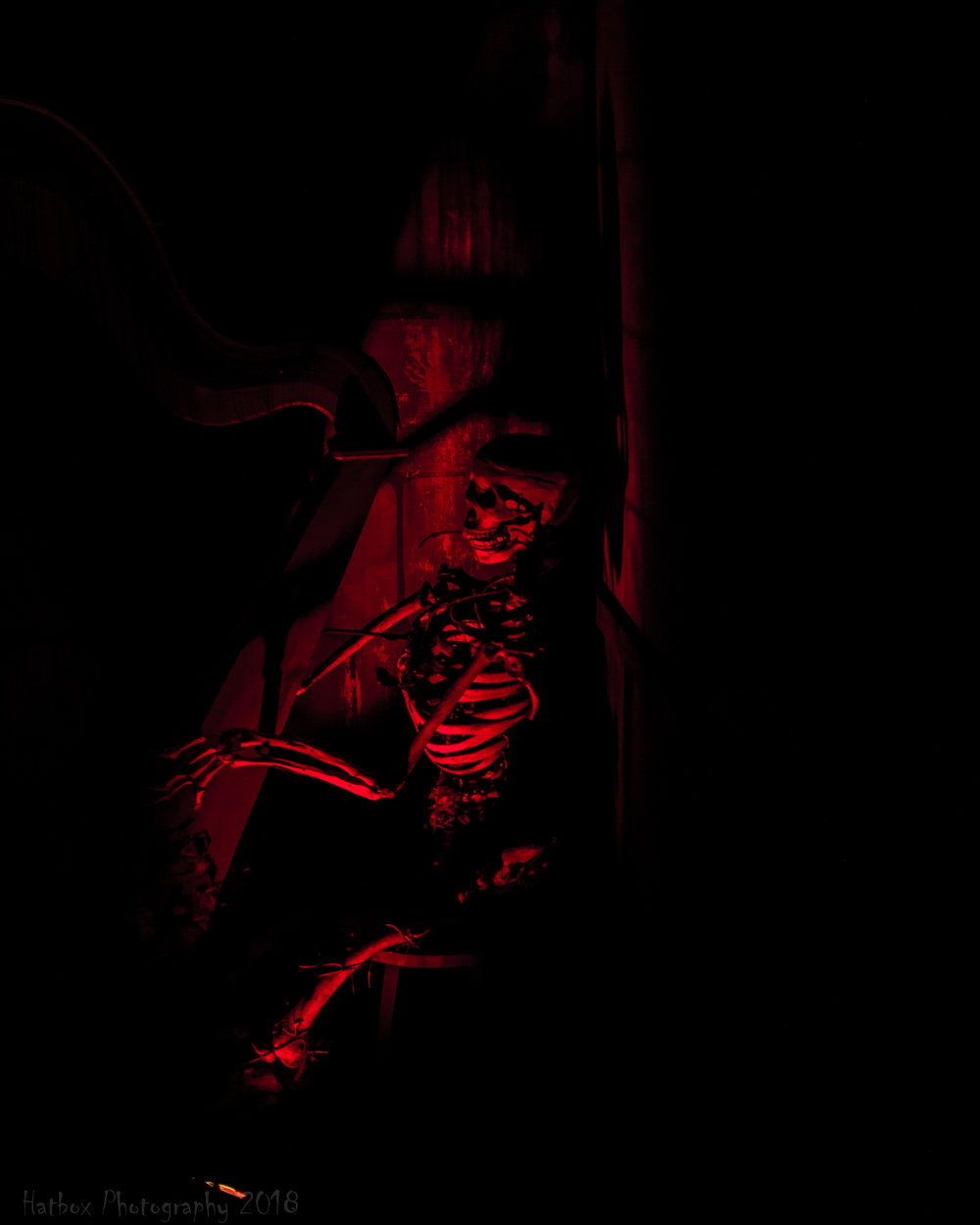 Dark Ride-2.jpg