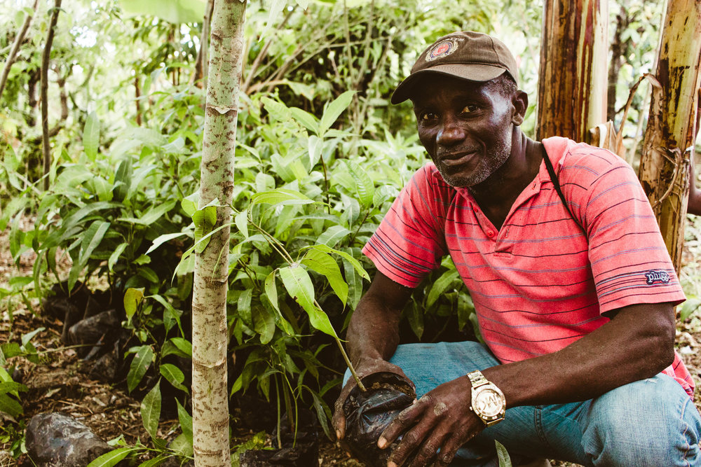 Copy of Haiti March-1-25.jpg