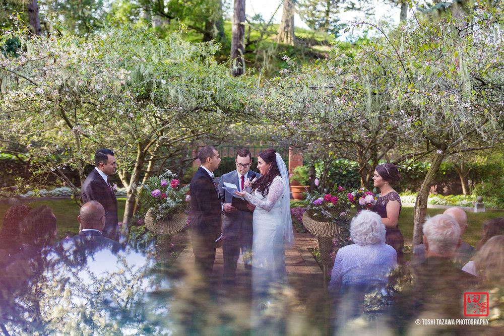 20161105 Jamie & Mannie San Francisco Golden Gate Park Shakespeare Garden Wedding - Toshi Tazawa Photography-16.jpg