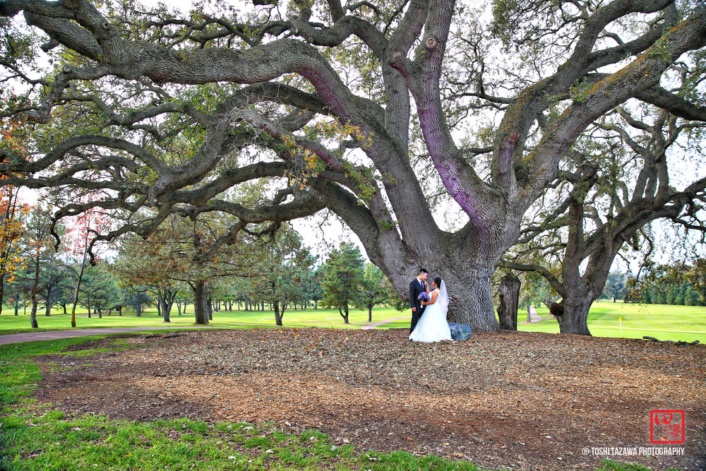 20161204 Lilac & Justin Boundary Oak Country Club Wedding - Toshi Tazawa Photography-28.jpg
