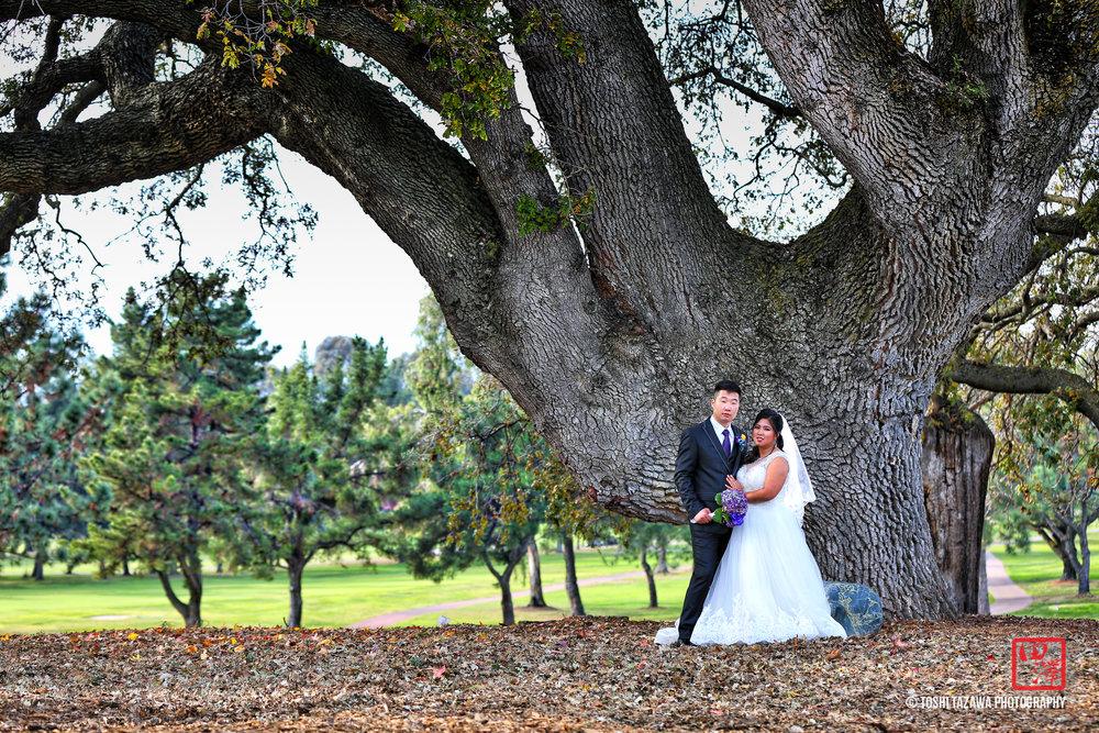 20161204 Lilac & Justin Boundary Oak Country Club Wedding - Toshi Tazawa Photography-13.jpg