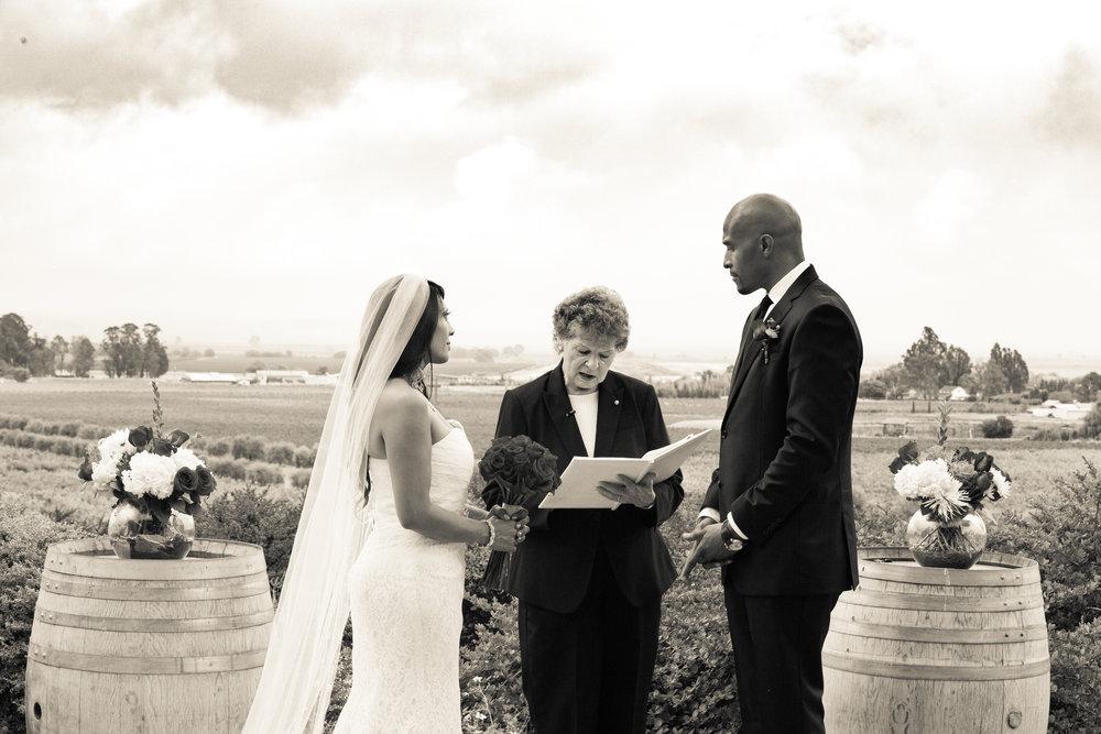 Toshi Tazawa Photography San Francisco CA Destination Wedding Photographer-62.jpg
