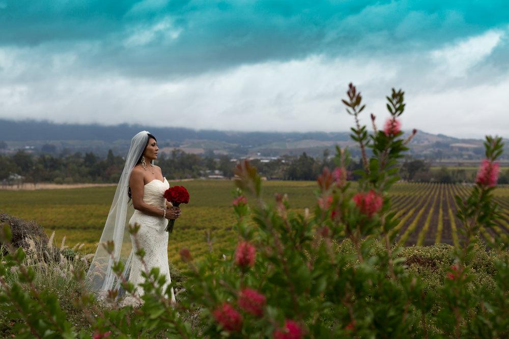 Toshi Tazawa Photography San Francisco CA Destination Wedding Photographer-103.jpg