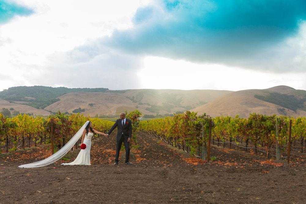 Toshi Tazawa Photography San Francisco CA Destination Wedding Photographer-145.jpg
