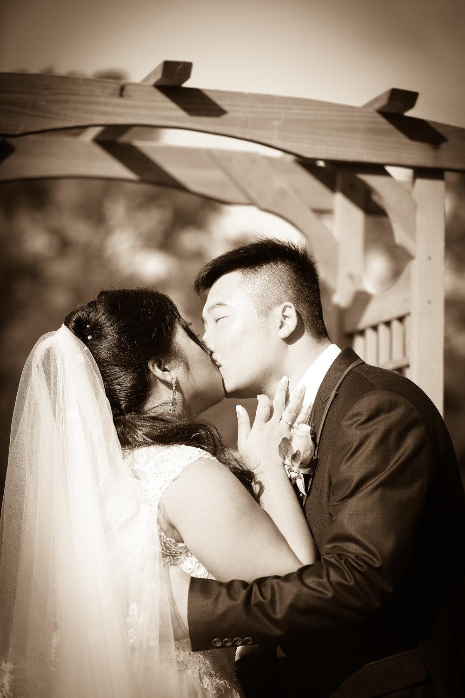 Toshi Tazawa Photography - San Francisco Destination Wedding Photographer-213.jpg