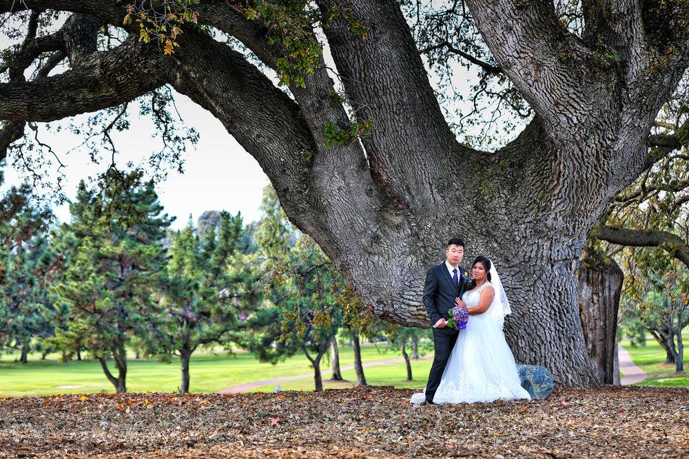 Toshi Tazawa Photography - San Francisco Destination Wedding Photographer-214.jpg