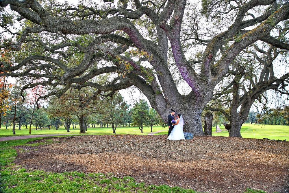 Toshi Tazawa Photography - San Francisco Destination Wedding Photographer-227.jpg