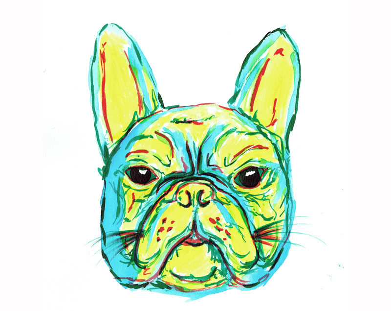 ALW-Clarke-French-Bulldog-watercolour.jpg