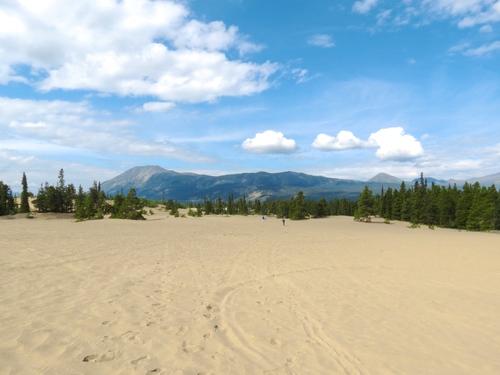 Carcross+Desert,+Yukon.jpeg