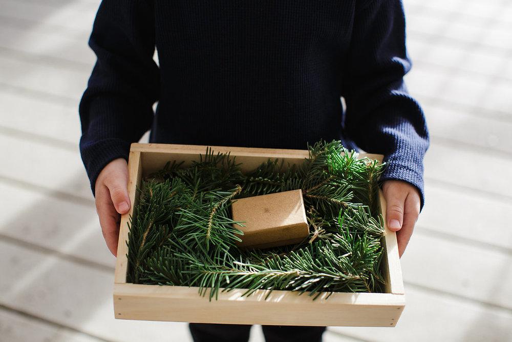 Ring bearer wooden box pine needles evergreen