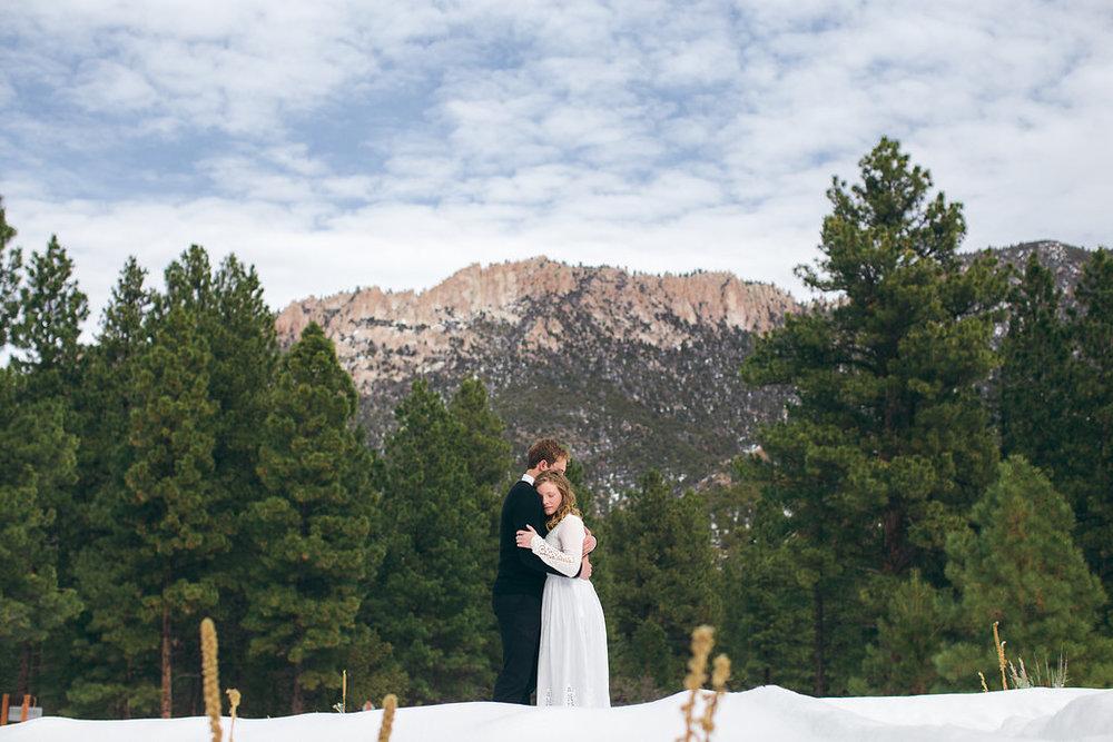 Epic mountain winter forest view landscape portrait Pine Valley Utah