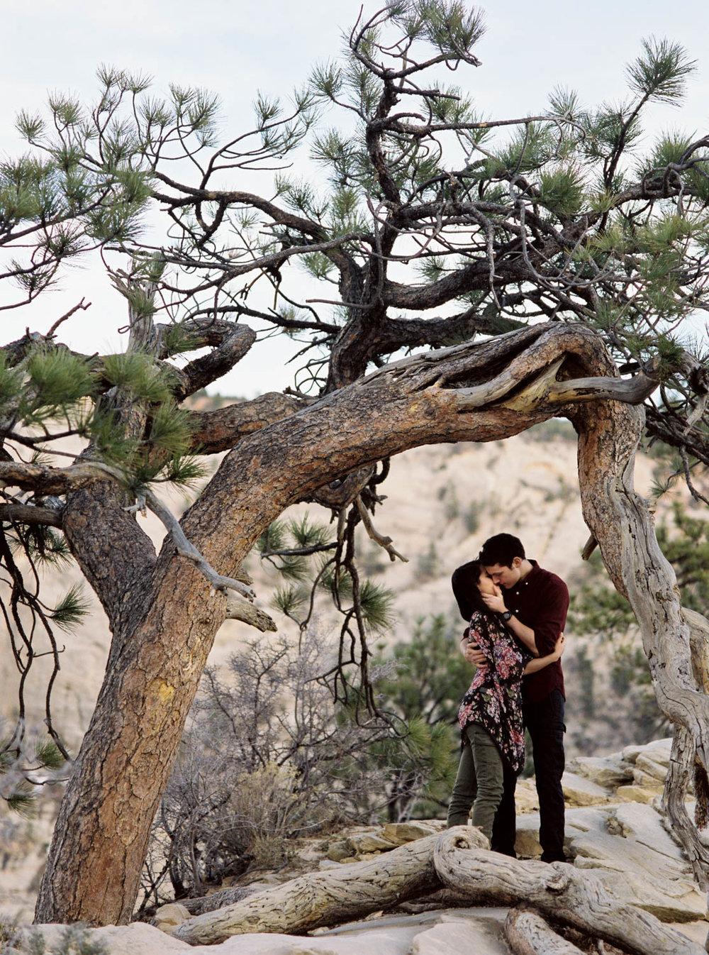 Angels landing Zion National Park fine art film wedding elopement photographer