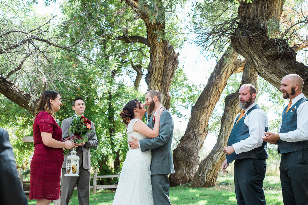 colorado native mountain meadow wedding