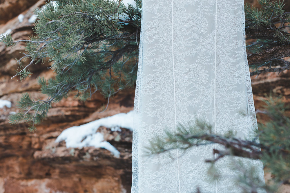 Lace wedding dress details Alexandra Grecco Fiorella Gown Zion National Park Elopement
