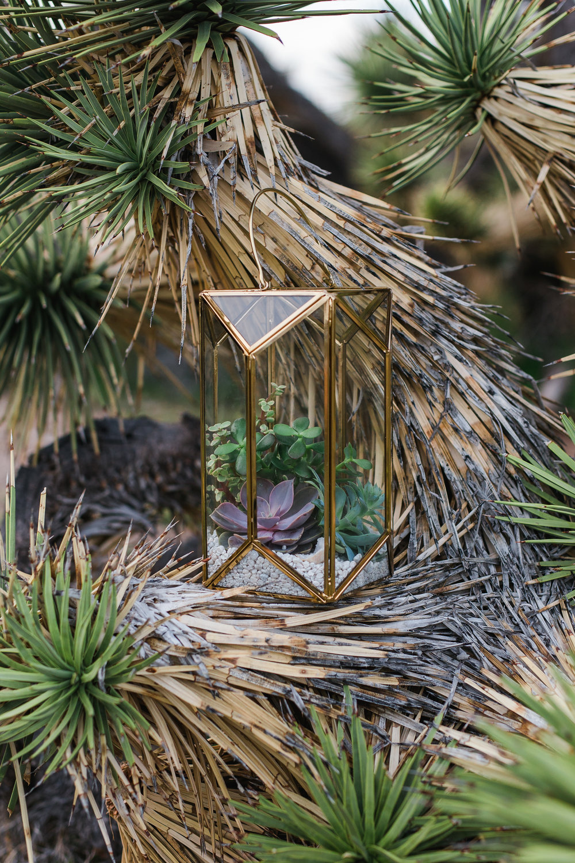 Target lantern terrarium Succulent bouquet arranged by Bloomers Flowers Saint George Utah Kyle Loves Tori Photography