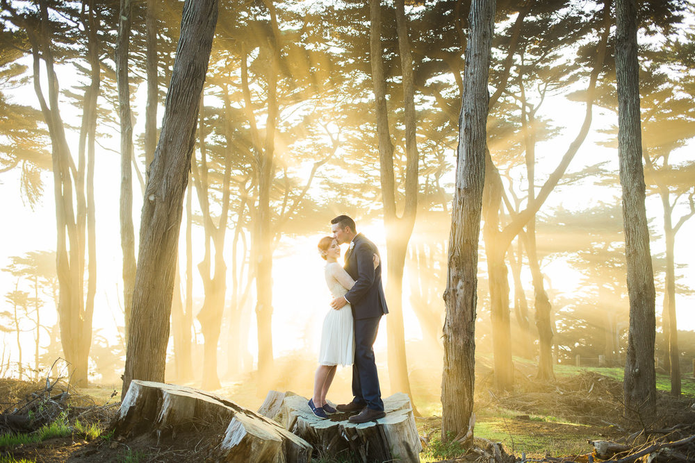 Bride and groom stand in front of explosive light through trees in San Francisco California