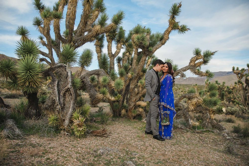 Indian Inspired Joshua Tree Elopement Fine Art Film Photographers