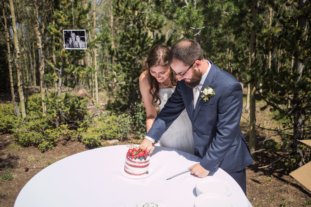 Cake Cutting Bride Groom Mountain Reception
