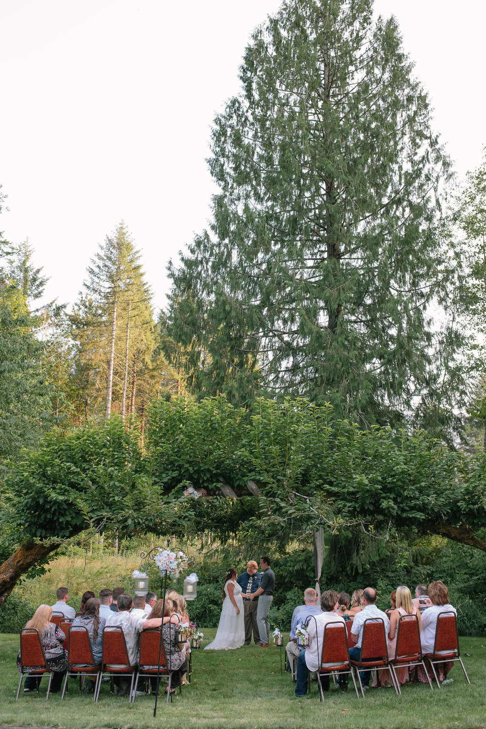 Mount Rainier Washington Intimate Ceremony