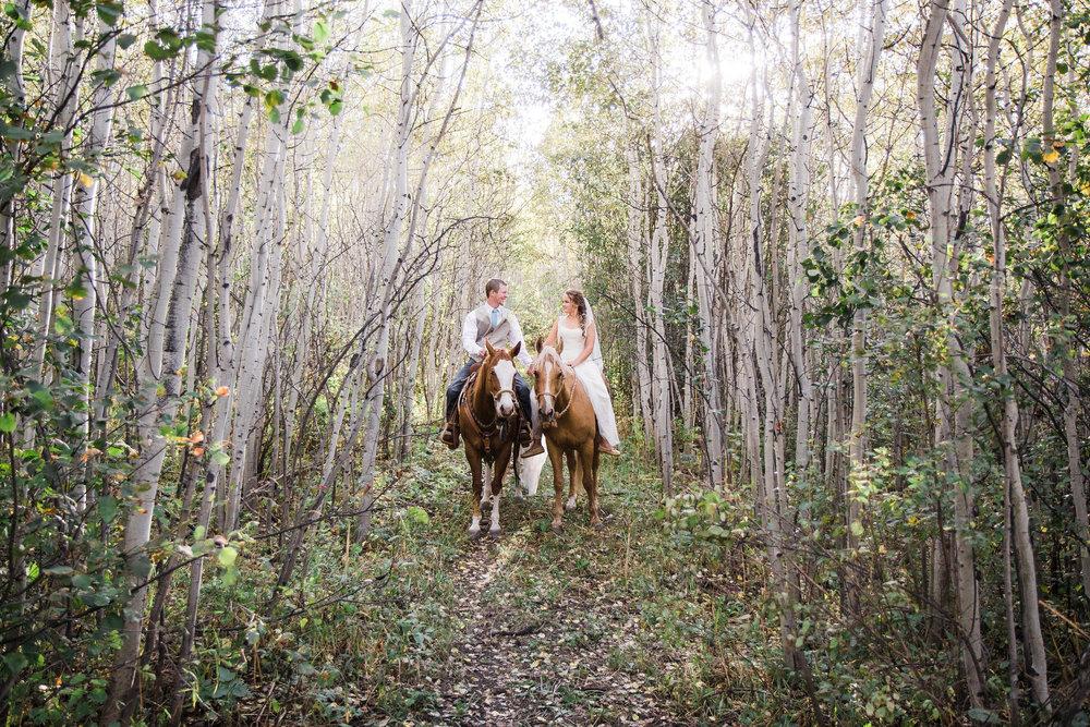 Aspen Grove Colorado Mountain Wedding