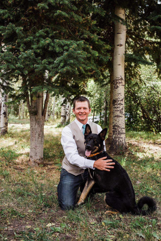 Groom German Shepherd Colorado Forest