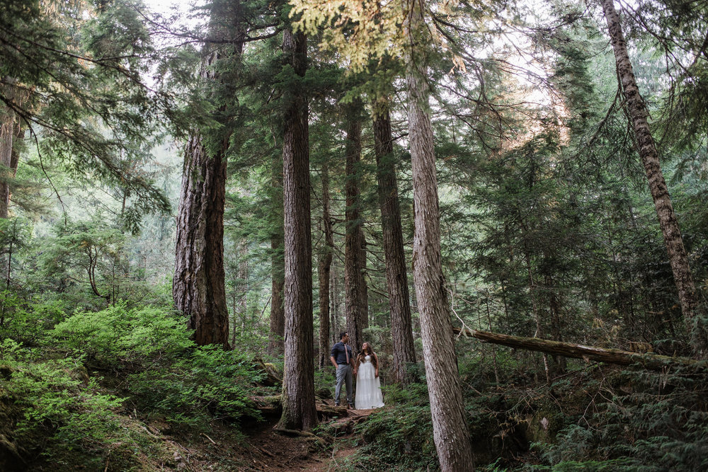 Adventure wedding pictures in Mount Rainier National Park