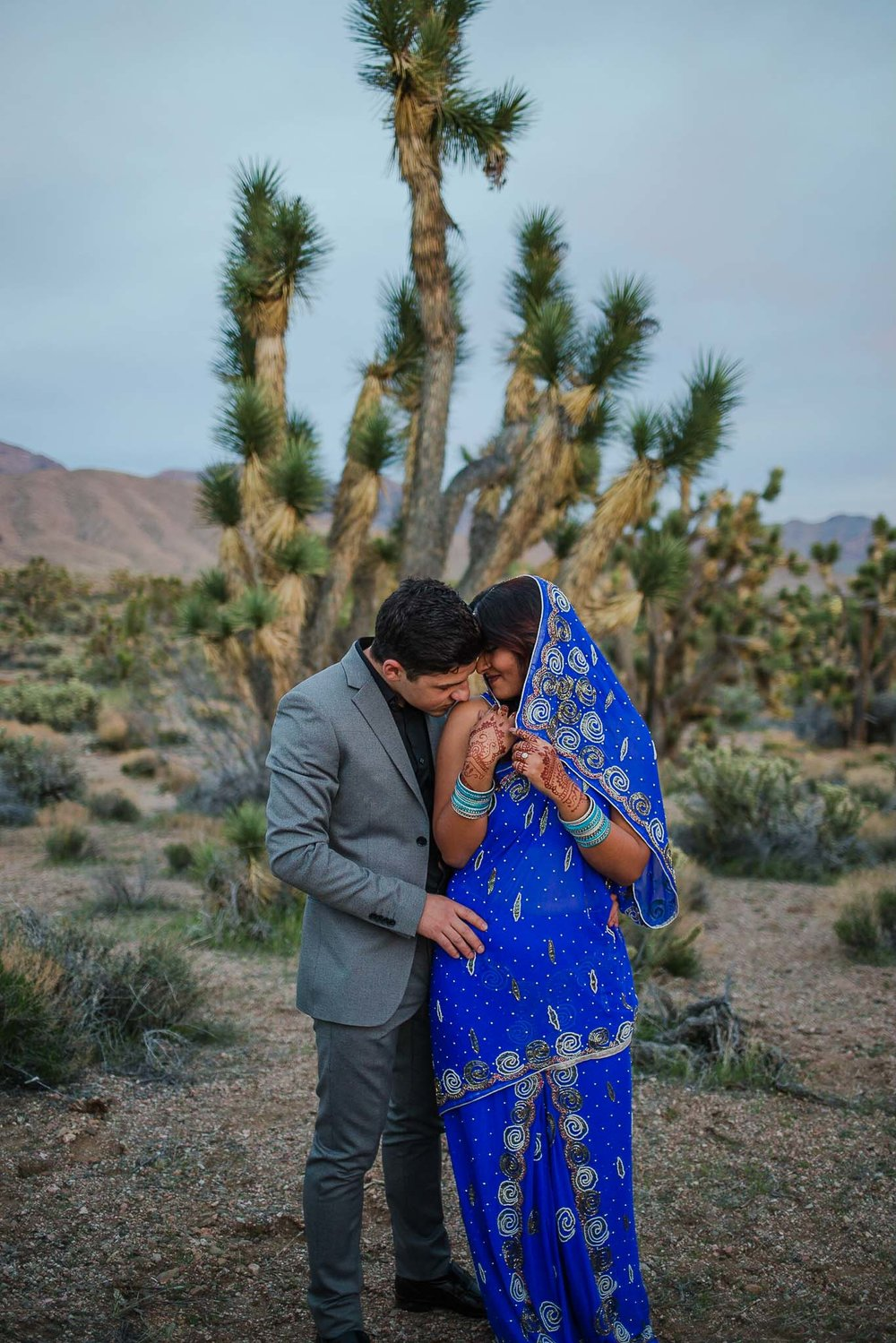 Bride in Indian Sari and groom snuggle for portraits in front of a Joshua Tree in Utah