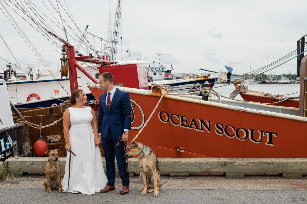 Wedding couple pose with the dogs in front of whaling ships in New Bedford, Massachusetts