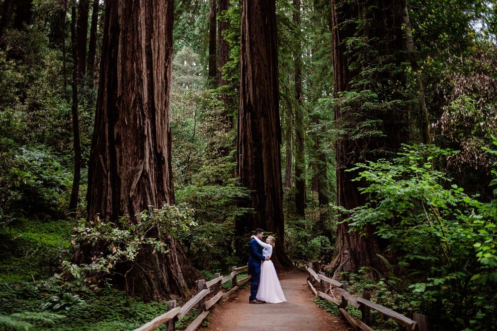 Wedding couple hold each other in a grove of Redwood Trees at the Muir Woods National Monument elopement
