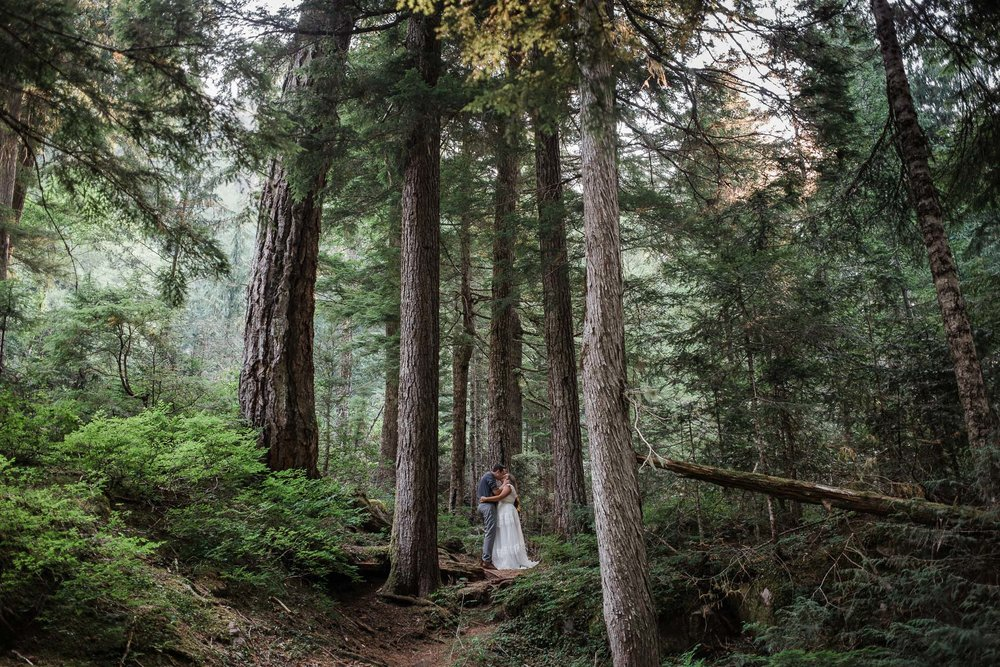 Bride and groom kiss surrounded by tall trees during their adventure wedding in Mount Rainier National Park