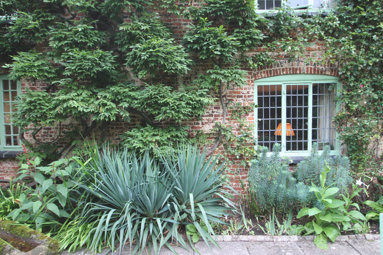 My Weekend with Rosemary — Roots and Ramblings