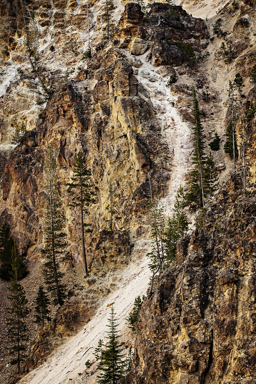 YellowstoneCanyon©BrianRiveraUncapher.jpg