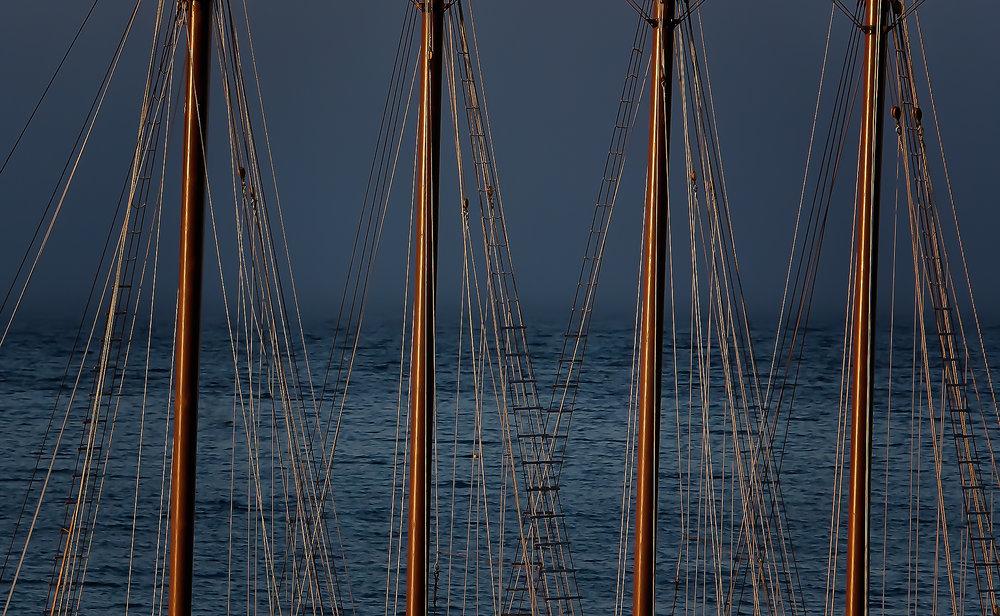Sailboat Masts ©BrianRiveraUncapher.jpg